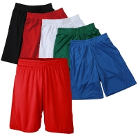 James & Nicholson Team Shorts